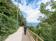 [울릉]코로나 위기 극복을 위한 관광활성화 방안 마련